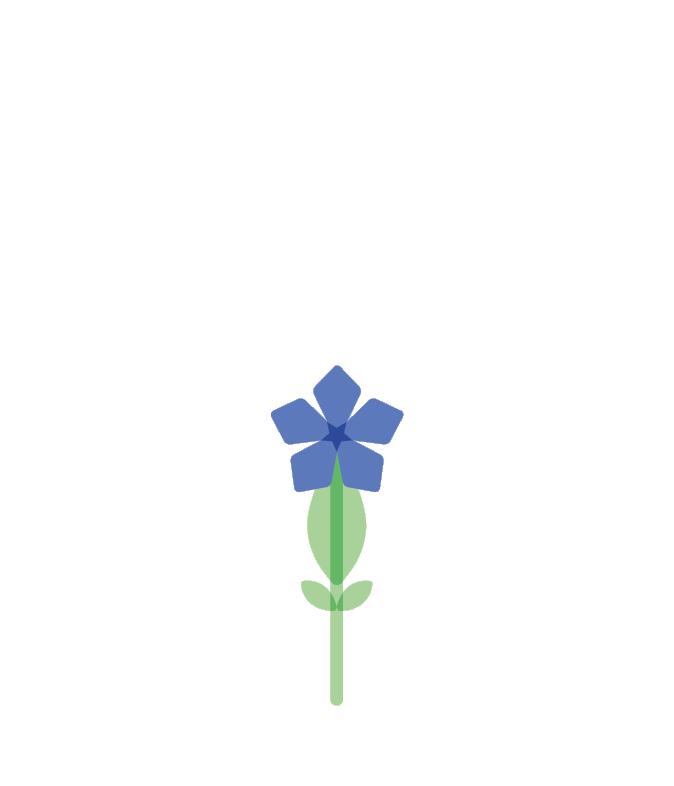 Die Wacholderheiden von Albgemacht bieten Frühlingsenzian Raum zum Blühen
