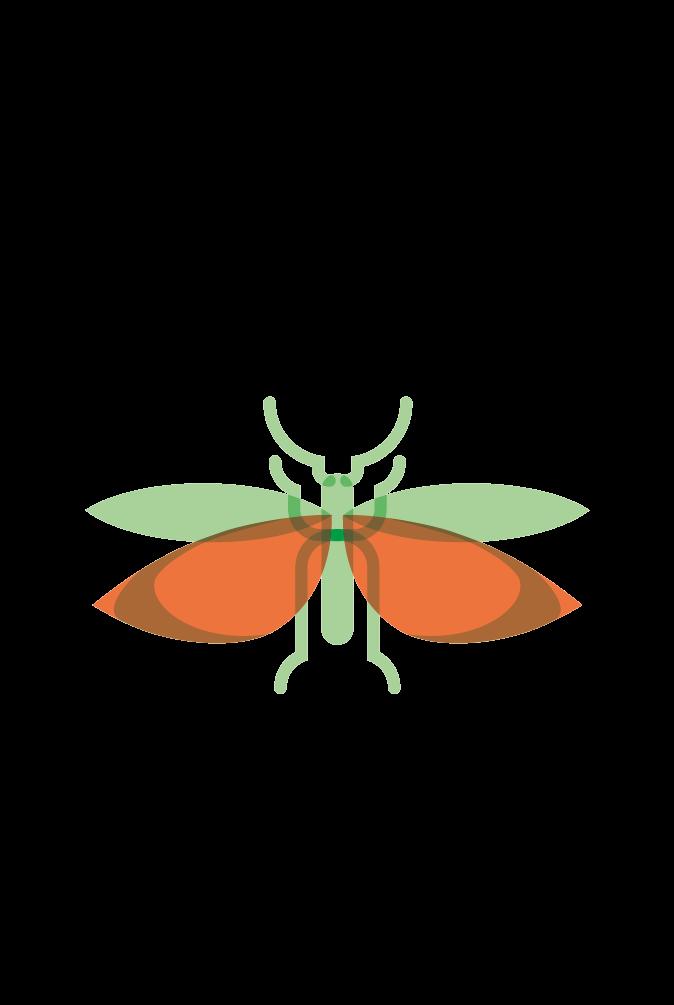 Albgemacht bietet der Rotflügligen Schnarrschrecke Lebensraum durch Wacholderheiden